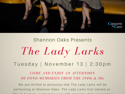 lady_larks_nov_13_sho.png